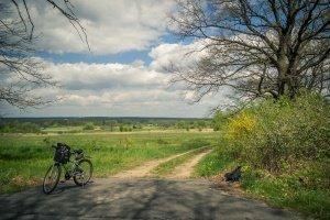 bike-1048135_1280